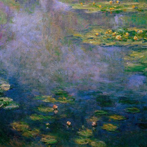 Kunstfilm Waterlilies Monet